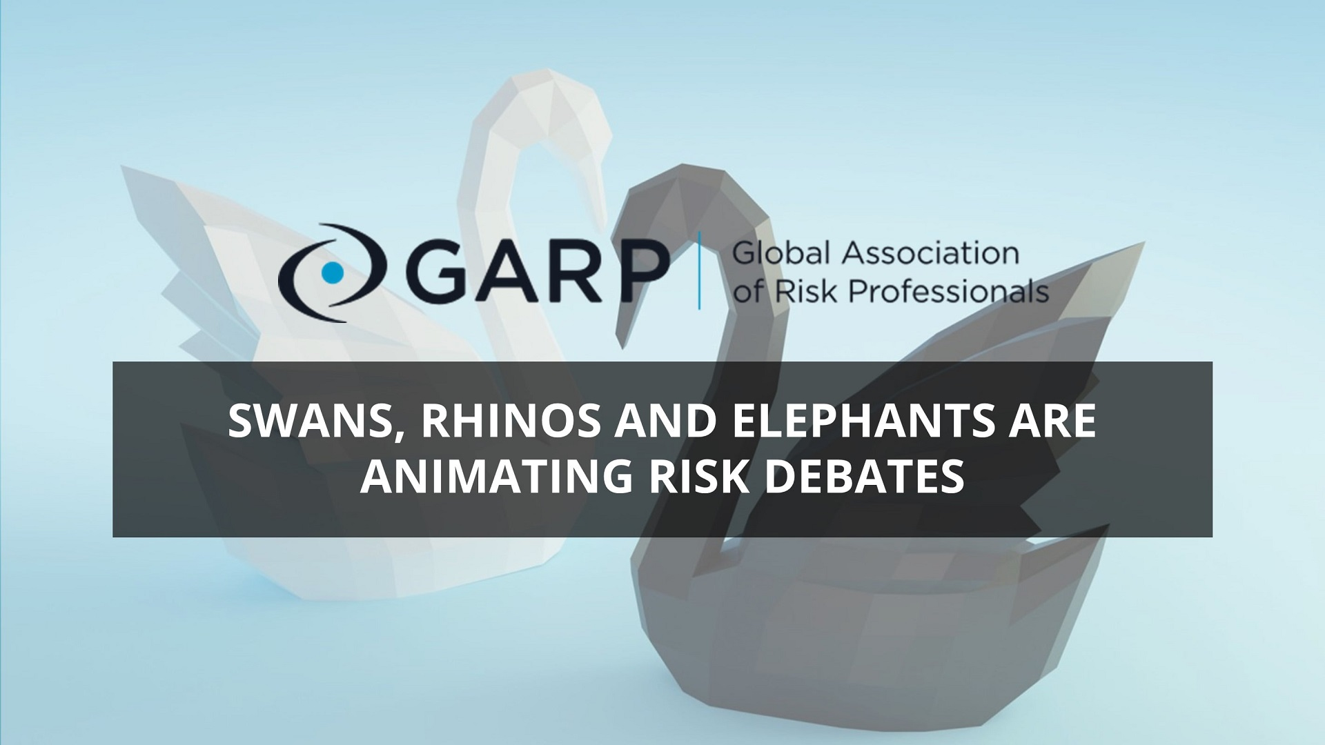 Prepare for black swans and grey rhinos in risk management